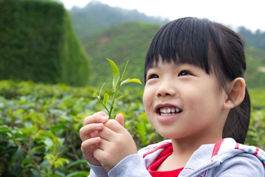 Pengaruh Faktor Lingkungan Bagi Tumbuh Kembang Si Kecil